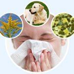 Що потрібно знати про астму та алергію
