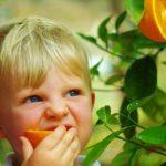 Особливості харчування дітей з алергіями