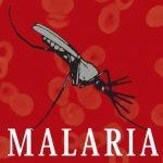 Історія відкриття збудника малярії