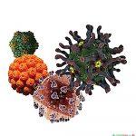 Вірусні гепатити