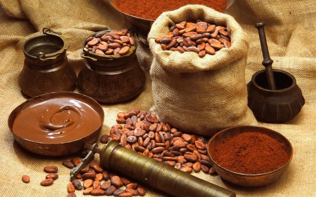 Користь какао-бобів