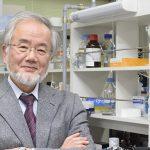 Нобелівська премія у галузі фізіології і медицини у 2016 році