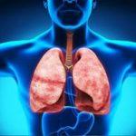 Морфологічні передумови виникнення захворювань дихальної системи