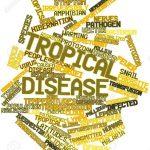 Окремі аспекти тропічної медицини: забуті тропічні хвороби