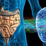 Мікроби і психіка людини – хто кого…