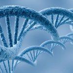 Досягнення молекулярної біології та генетики
