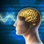 Вплив радіоактивних елементів на нервову систему