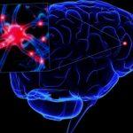 Боковий аміотрофічний склероз: історія невиліковної хвороби
